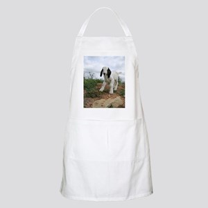 Kid Goat On Hill Apron