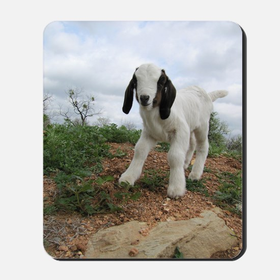 Kid Goat On Hill Mousepad