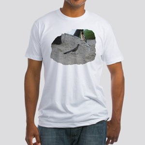 Roadrunner and the Coyote Fitted T-Shirt