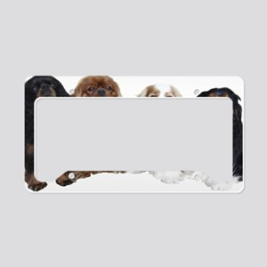 4cavswhite License Plate Holder
