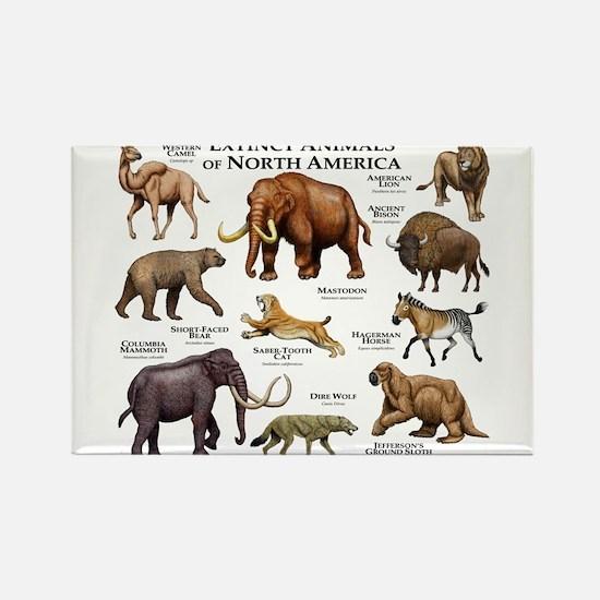 Extinct Animals of North America Rectangle Magnet