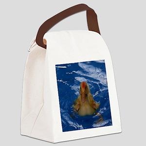 Uriel the Pekin Duck Canvas Lunch Bag