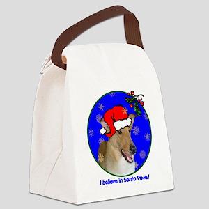 colliesmoothxmas-shirt Canvas Lunch Bag