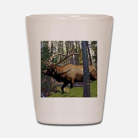 Bull elk in pines Shot Glass