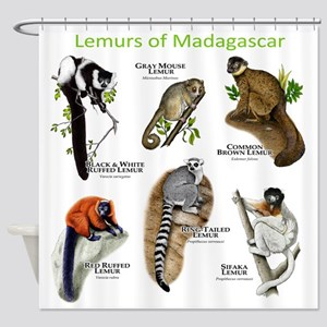 Lemurs of Madagascar Shower Curtain
