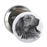 Long-Haired Dachshund Button