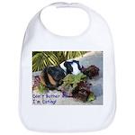 Baby Guinea Pig Eating Baby Bib