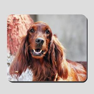 Irish Setter Dog Mousepad