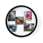 Guinea Pig Photos Wall Clock