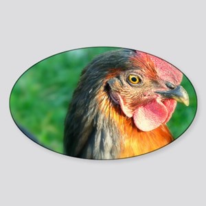 Chicken Sticker (Oval)