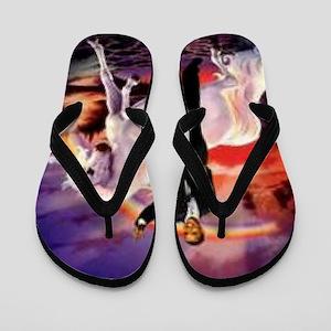 Obama on Unicorn Flip Flops