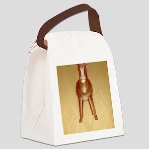 Velvet-Rabbit 5 Canvas Lunch Bag