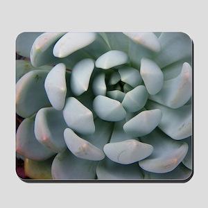 IMGP3706-crop Mousepad