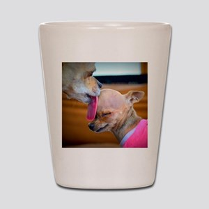 A Mothers Love Shot Glass