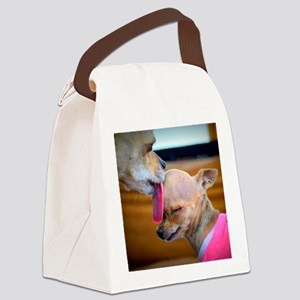 A Mothers Love Canvas Lunch Bag
