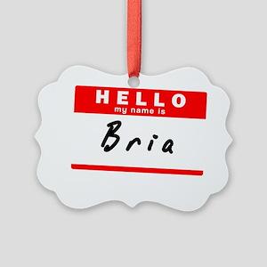 Bria Picture Ornament