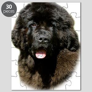 Newfoundland pup 9T086D-104 Puzzle