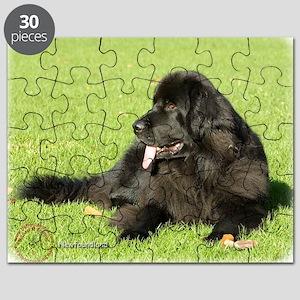 Newfoundland 9M099D-038 Puzzle