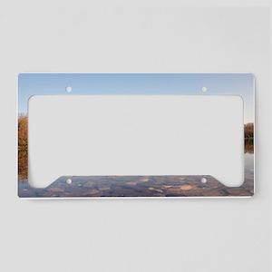 IMG_5817 License Plate Holder