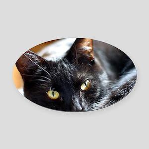 Sleek Black Cat Oval Car Magnet