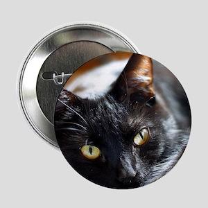 """Sleek Black Cat 2.25"""" Button"""