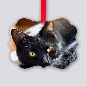 Sleek Black Cat Picture Ornament