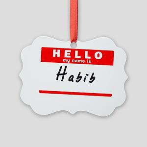 Habib Picture Ornament