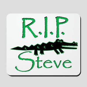 R.I.P. Steve Mousepad