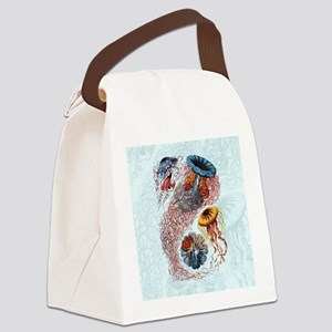 haeckeljellyfish1SC Canvas Lunch Bag
