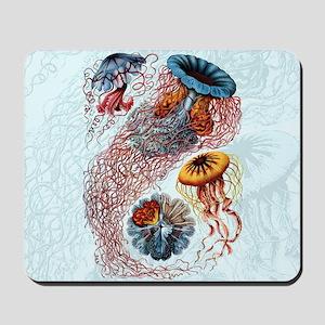 haeckeljellyfish1SC Mousepad