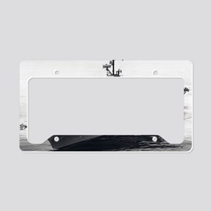hornet cvs large framed print License Plate Holder