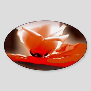 Orange Rose 35 23 200 Sticker (Oval)