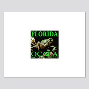 Florida Ocala National Forest Small Poster