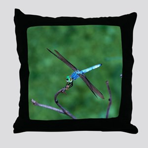 Beautiful Blue Dragonfly Photo Throw Pillow