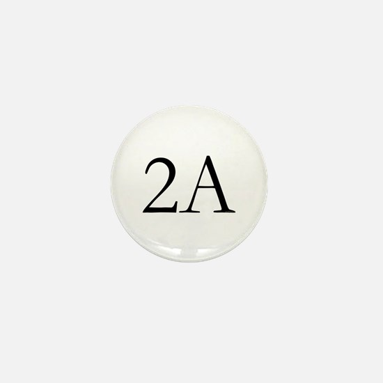 2A Mini Button