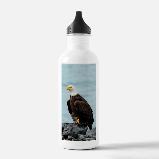 NookSleeve_eagle_4 Water Bottle
