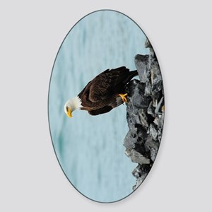 NookSleeve_eagle_3 Sticker (Oval)