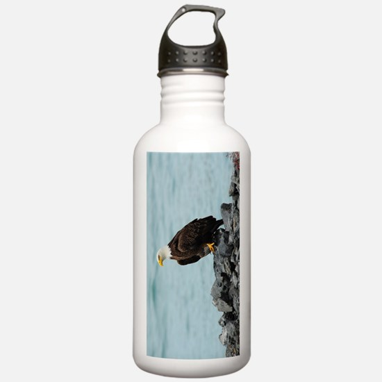 NookSleeve_eagle_3 Water Bottle