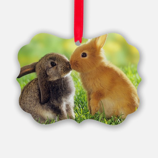 Love Bunnies Ornament