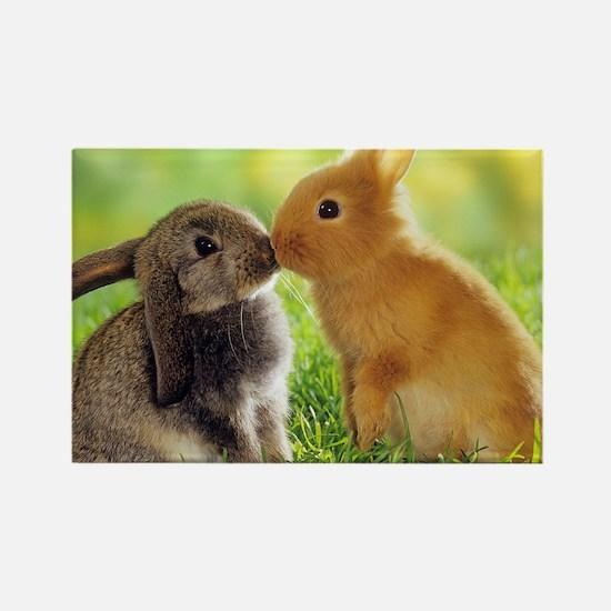 Love Bunnies Rectangle Magnet