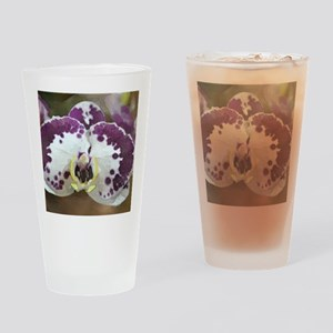 Inkblot Moth Orchid Drinking Glass