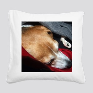 Let Sleeping Dogs Lie Square Canvas Pillow