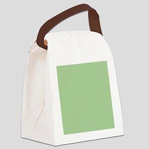 Pistachio plain Shower curtain Canvas Lunch Bag