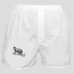 Possums Speed Bumps White Boxer Shorts