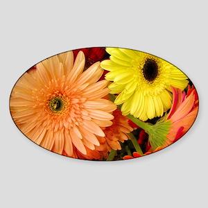 Horizontalclutch-gerberadaisies Sticker (Oval)