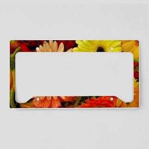 laptopskin-gerberadaisies License Plate Holder