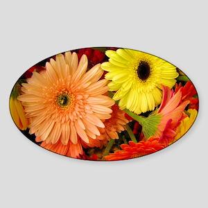 laptopskin-gerberadaisies Sticker (Oval)