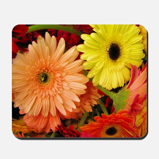 laptopskin-gerberadaisies Mousepad