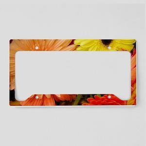 cancooler-gerberadaisies License Plate Holder