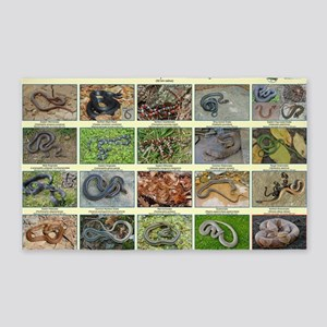 snakes of dc 3'x5' Area Rug
